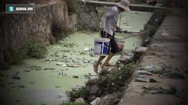 Video: Cận cảnh rau sạch tưới nước bẩn tại Hà Nội - ảnh 1