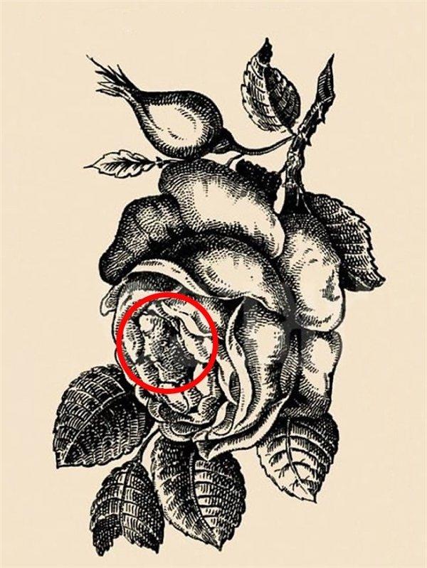 Bí mật ẩn trong bức tranh: Chỉ người óc logic sắc bén mới dễ dàng tìm ra - ảnh 9