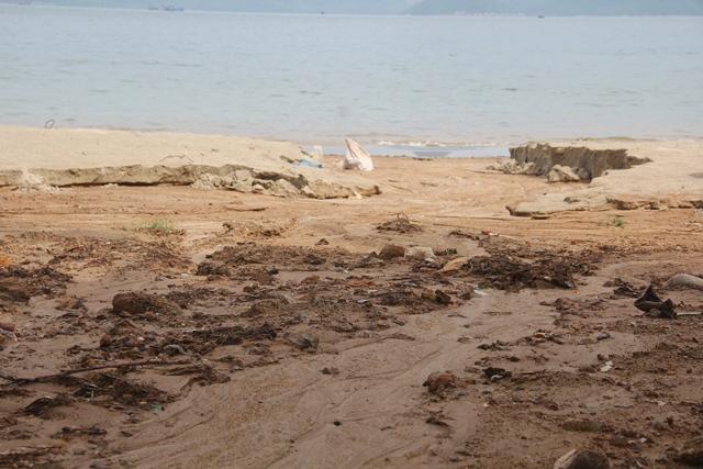 Bùn đất tại dự án biển Tiên Sa tràn xuống biển Đà Nẵng sau mưa lớn - Ảnh 6.
