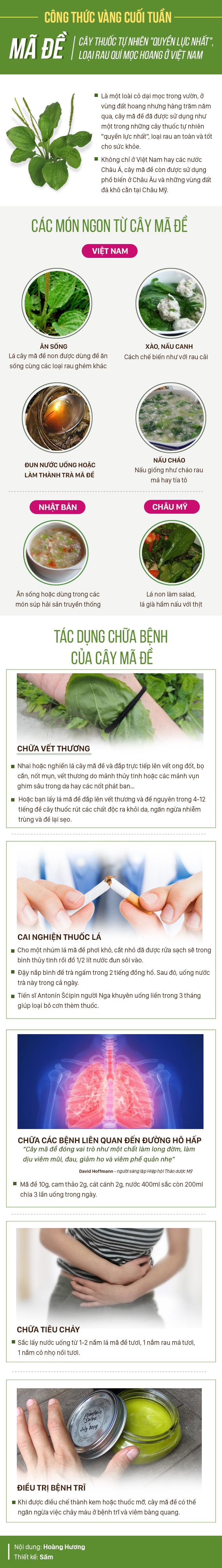 Một trong những cây thuốc quyền lực nhất thế giới: Người Việt tiện tay hái là có ngay - Ảnh 1.
