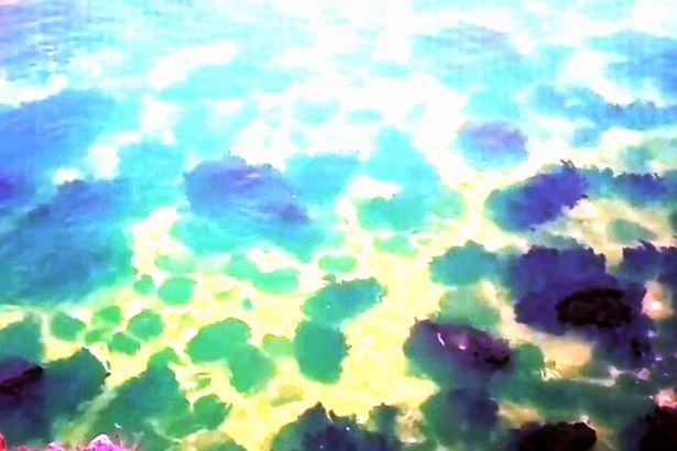 Biển Đen đột nhiên chuyển màu xanh dạ quang khiến nhiều người lo ngại - Ảnh 2.