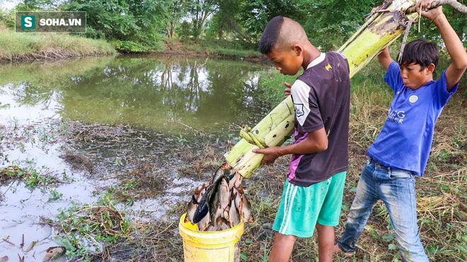 Thấy cây chuối gần bờ sông, 2 cậu bé thả xuống nước rồi ung dung thu được mẻ cá lớn - Ảnh 7.