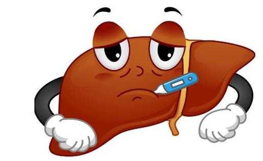 Những dấu hiệu cảnh báo lá gan của bạn đang bị quá tải - Ảnh 3.