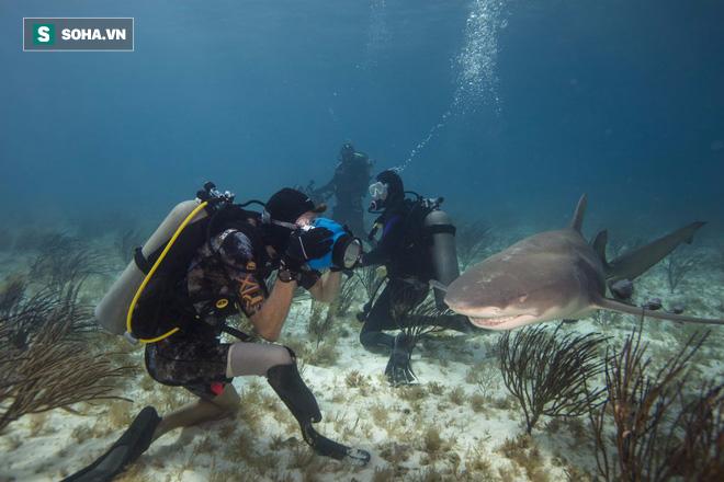 Đây là cách 1 người đối xử với loài cá mập sau khi bị chính chúng... cắn đứt chân - Ảnh 2.