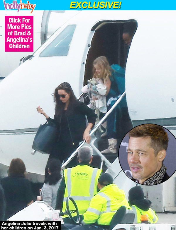 Brad Pitt điên tiết khi Angelina Jolie liên tục di chuyển chỗ ở của các con - Ảnh 2.
