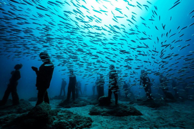 Vùng biển khiến ai cũng phải lạnh người khi nhìn thấy cảnh tượng ở dưới đáy - Ảnh 2.
