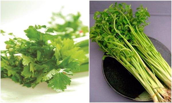 Tác dụng chữa bệnh từ hai loại rau quen thuộc bếp nhà nào cũng có vào dịp Tết - Ảnh 1.