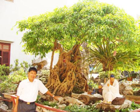 Mãn nhãn với những vườn cây tiền tỉ - Ảnh 2.