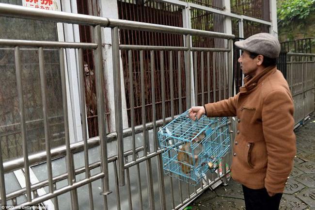 Chủ vườn thú bị chỉ trích vì cho các loài động vật ăn thịt nhau - Ảnh 2.