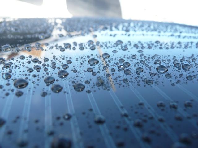 Quốc y đại sư Trung Quốc: Cơ thể dư thừa độ ẩm là nguyên nhân gây ra nhiều loại bệnh - Ảnh 1.