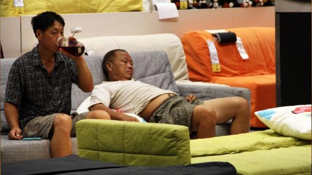 Làm giàu không khó với công việc chỉ cần ngủ mà vẫn kiếm được 330 triệu/1 năm - Ảnh 1.