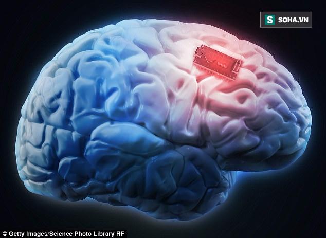 Elon Musk và tham vọng điên rồ: Upload... não người lên Internet - Ảnh 2.