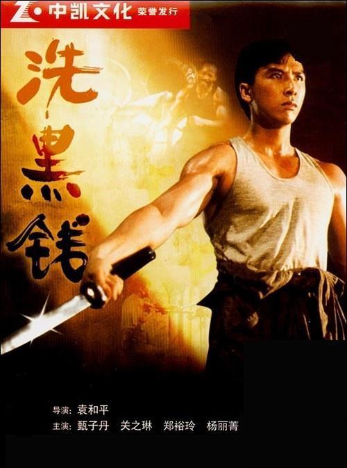 Chuyện đời của cao thủ võ lâm bị Chân Tử Đan cướp vai chính, ép rời làng giải trí - Ảnh 2.