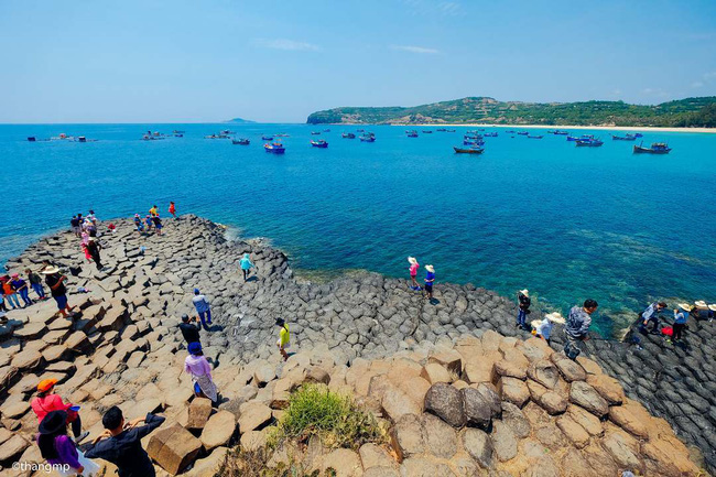 Thăm Ghềnh Đá Đĩa, thưởng thức hải sản đầm Ô Loan - 2 trải nghiệm nhất định phải làm khi ghé Phú Yên - Ảnh 1.