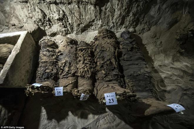 Khai quật mộ cổ Ai Cập 2300 năm tuổi - ít nhất 17 xác ướp cấp cao được tìm thấy - Ảnh 1.