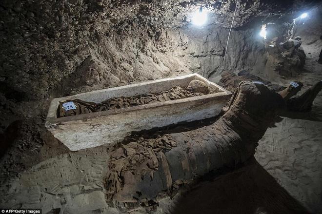 Khai quật mộ cổ Ai Cập 2300 năm tuổi - ít nhất 17 xác ướp cấp cao được tìm thấy - Ảnh 2.