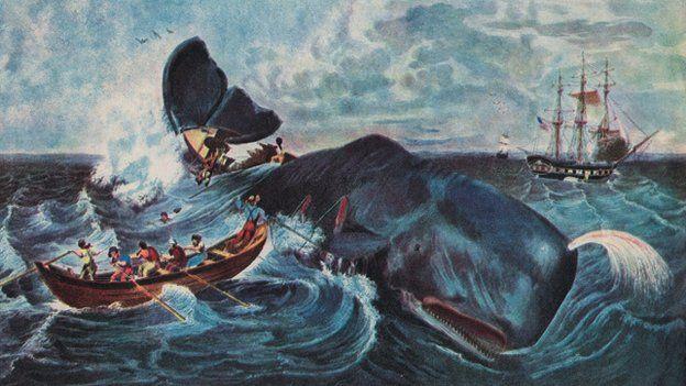 Moby - Huyền thoại về cá voi trắng và cuộc trả thù tàn khốc đối với con người - ảnh 1