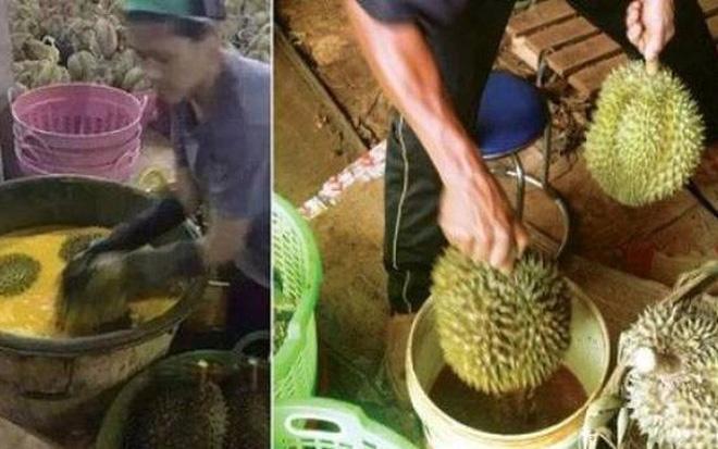 Hai TS ở Úc lên tiếng về chuyện bắt quả tang hoa quả có thuốc thúc chín tại Việt Nam - Ảnh 1.