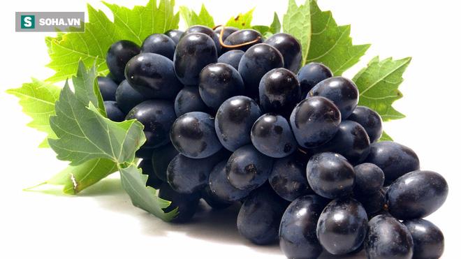 Chất chống ung thư có tác dụng mạnh trong một loại quả bạn thường ăn