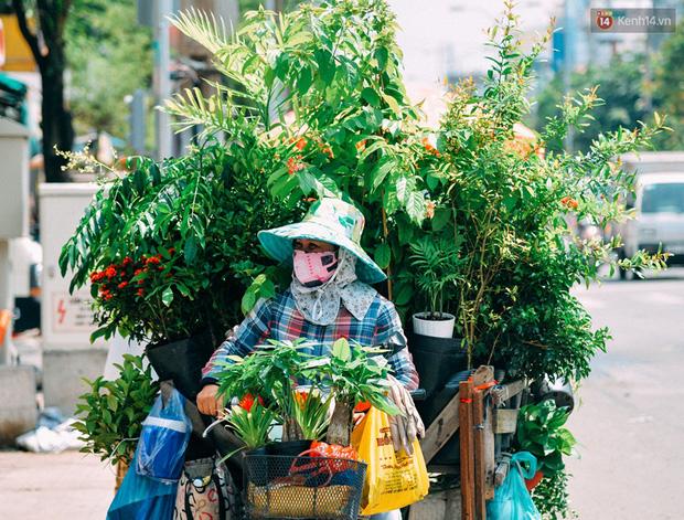 Trên đường phố Sài Gòn, có những người hàng chục năm chở theo một chợ xanh sau yên xe máy - ảnh 1