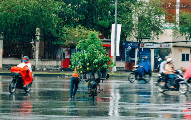 Trên đường phố Sài Gòn, có những người hàng chục năm chở theo một chợ xanh sau yên xe máy - ảnh 2