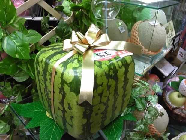 Đây mới là lý do thật sự khiến người Nhật Bản trồng dưa hấu vuông - Ảnh 1.