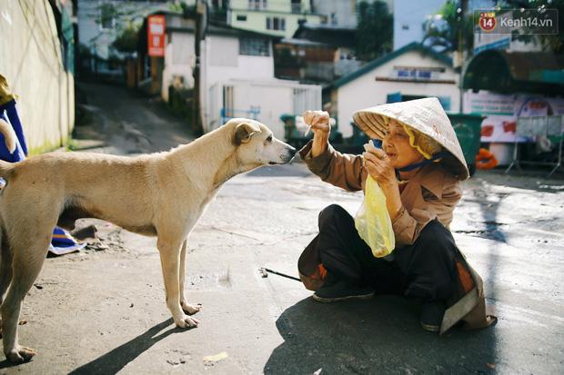 Hồng nhan thời trẻ nhưng về già chẳng chồng con, cụ bà 83 tuổi bầu bạn với thú hoang nơi phố núi Đà Lạt - Ảnh 1.