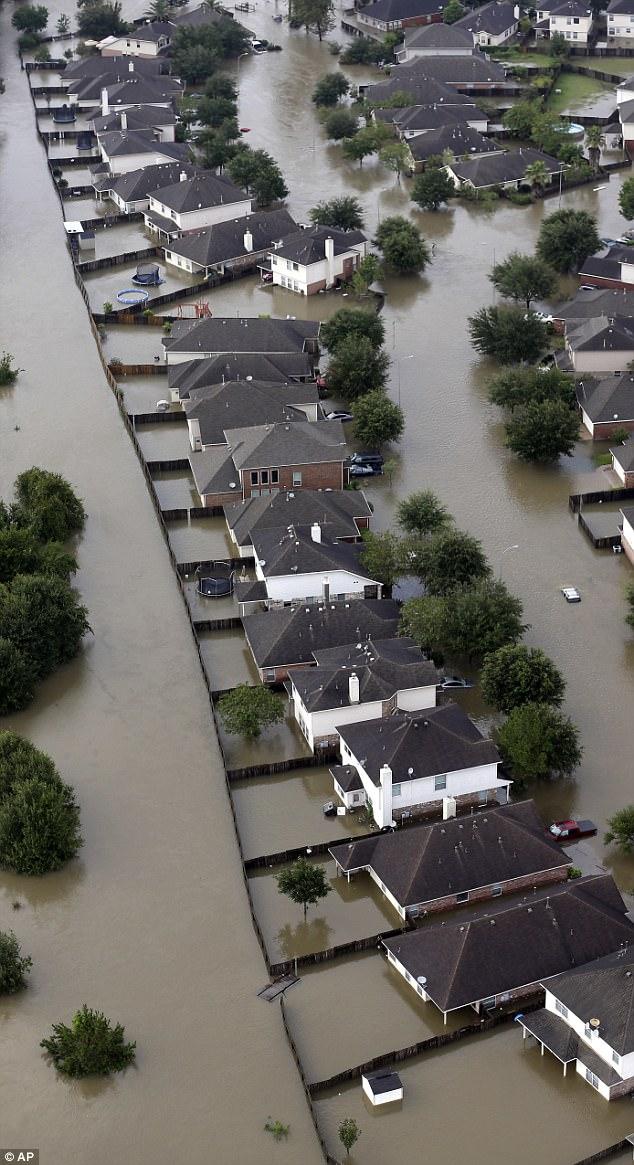 Siêu bão Harvey vừa tan, lộ diện sinh vật đáng sợ không ngừng gia tăng, xâm chiếm Texas - Ảnh 1.
