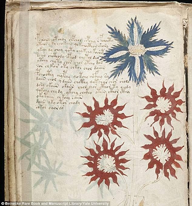 Hé lộ điều bất ngờ trong bản thảo Voynich, cuốn sách 600 năm tuổi thách thức giới khoa học - ảnh 4