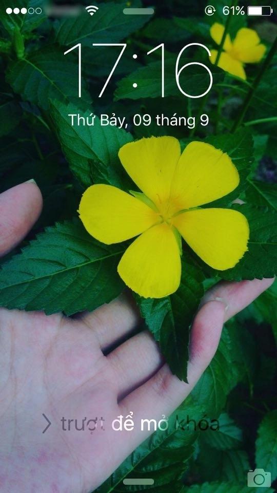 Dân mạng chế ảnh Face ID iPhone X trong điều kiện thực tế ở Việt Nam - Ảnh 3.