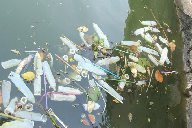 Hà Nội: Bao cao su nổi trắng một góc hồ Tây, người dân chèo thuyền ra vớt - Ảnh 2.