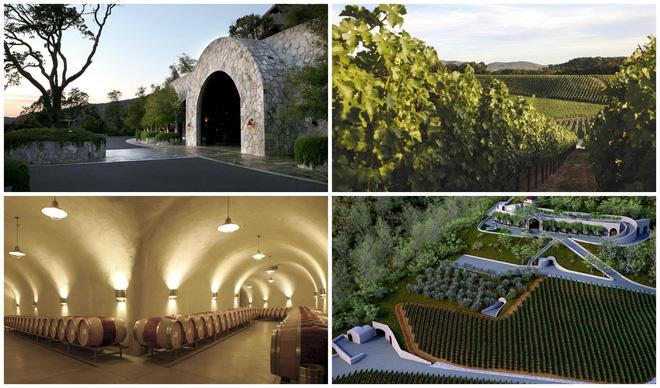 Những hình ảnh về vườn nho và hầm ủ rượu vang ở Mỹ