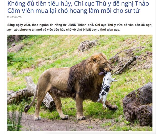 Chi cục Thú y TP. HCM lên tiếng trước tin bịa đặt về việc đề nghị Thảo Cầm Viên mua lại chó hoang làm mồi cho sư tử - Ảnh 1.