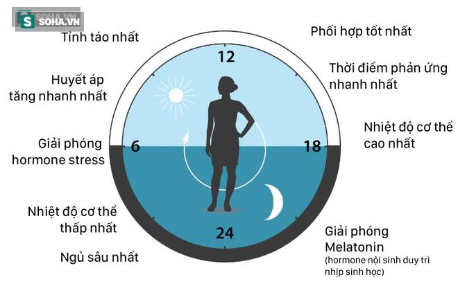 Công thức sống lành mạnh: Ăn, tập, ngủ đảm bảo đồng hồ sinh học vận hành tốt nhất - Ảnh 2.