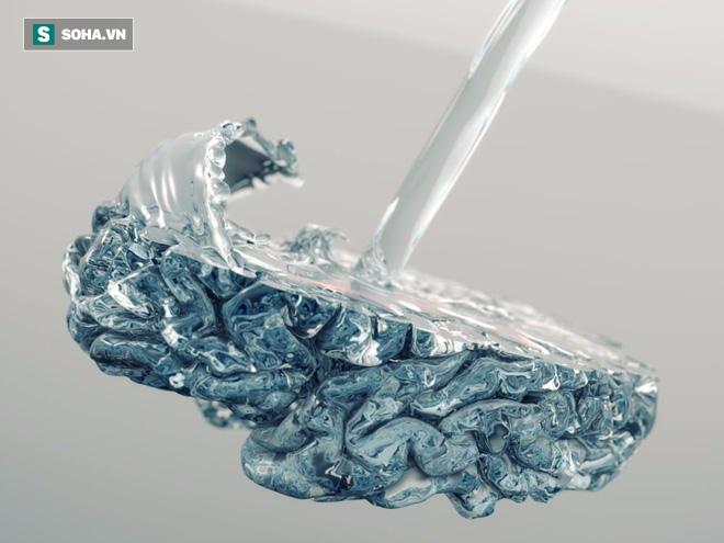 Khi nào não bộ bảo chúng ta nên ngừng uống nước? - Ảnh 2.