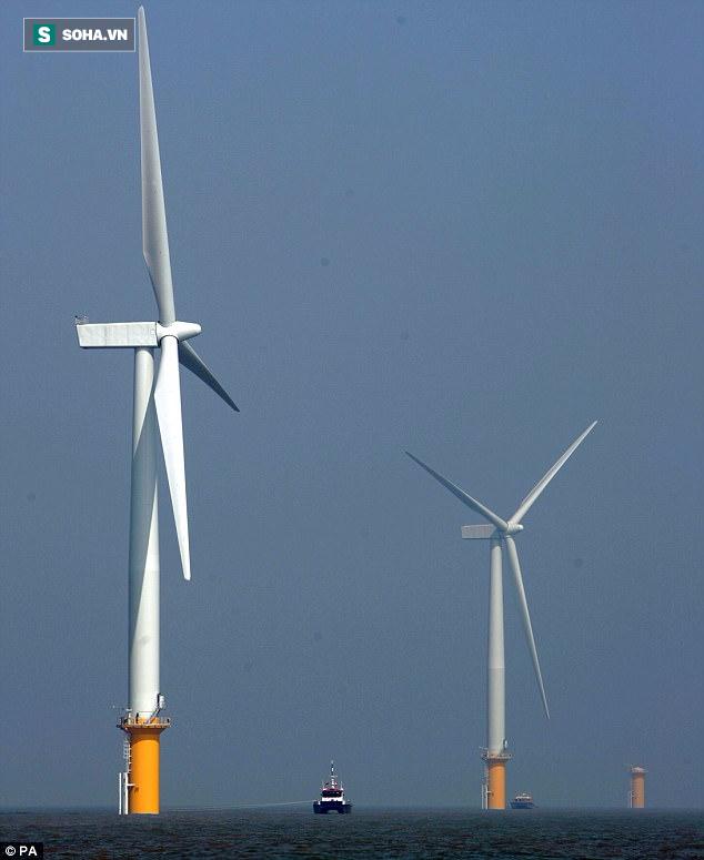 Đột phá: Trang trại điện gió lớn bằng diện tích Ấn Độ đủ cấp điện cho toàn Trái Đất - Ảnh 1.
