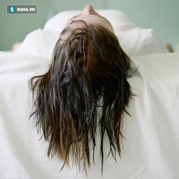 Đừng để tóc ướt khi đi ngủ nếu bạn không muốn dành 1/3 cuộc đời ngủ với vi khuẩn - Ảnh 2.