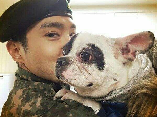 SBS công bố CCTV hiện trường vụ chó của Siwon cắn CEO tử vong, gián tiếp chỉ ra gia đình anh nói dối - Ảnh 3.