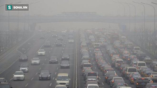 Ô nhiễm môi trường: Một trong những nguyên nhân gây tử vong đáng báo động - ảnh 3