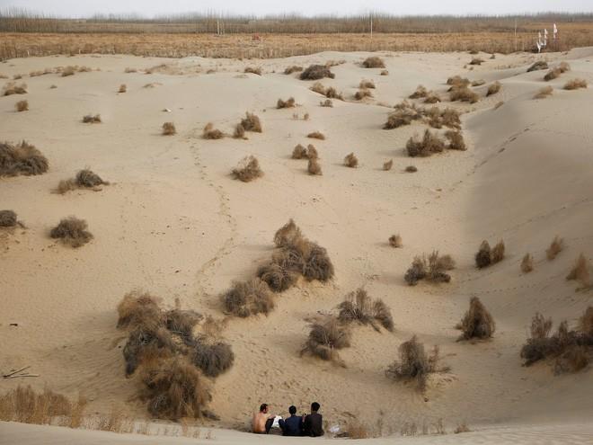 Trung Quốc muốn xây đường ống nước dài 1.000 km nhằm biến sa mạc khổng lồ thành ốc đảo trù phú - Ảnh 1.