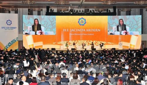 Tầm nhìn APEC sau năm 2020 - Thúc đẩy sử dụng hiệu quả các nguồn lực và công nghệ  - Ảnh 1.