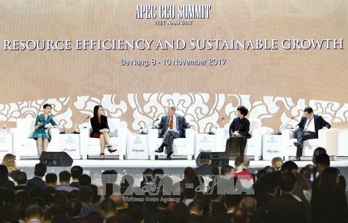 Tầm nhìn APEC sau năm 2020 - Thúc đẩy sử dụng hiệu quả các nguồn lực và công nghệ  - Ảnh 3.