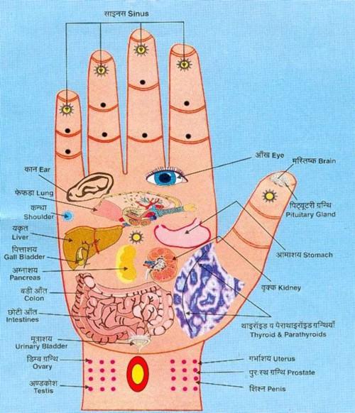 Một điểm trên bàn tay bị đỏ: Dấu hiệu cảnh báo bệnh gan không thể xem nhẹ - Ảnh 1.