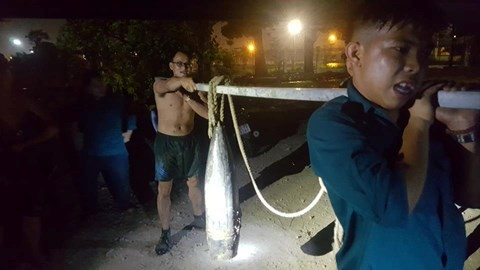 Đồng Nai: Đánh cá dưới chân cầu, người dân phát hiện 2 quả đạn pháo - Ảnh 1.
