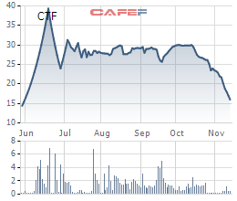 Khách mua ô tô bình tĩnh chờ thuế, cổ phiếu CTF bay nửa giá chỉ trong 1 tháng  - Ảnh 1.