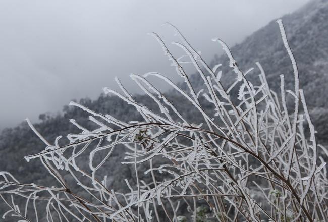 Đừng tưởng bạn đã biết: Lạnh sâu nhất Việt Nam trong vòng 40 năm trở lại đây là mấy độ? - Ảnh 2.