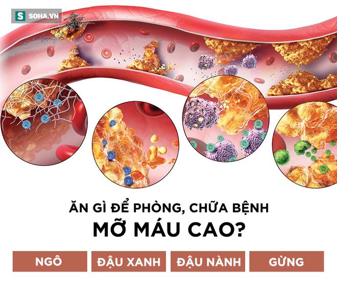 Mỡ máu cao gây ra 3 loại bệnh nguy hiểm, hiểm họa bắt đầu từ 4 thói quen nhiều người mắc - Ảnh 1.