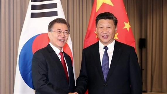 Ông Moon Jae-in muốn gì khi đột ngột phá băng  Trung-Hàn sau 1 năm lạnh nhạt? - Ảnh 1.