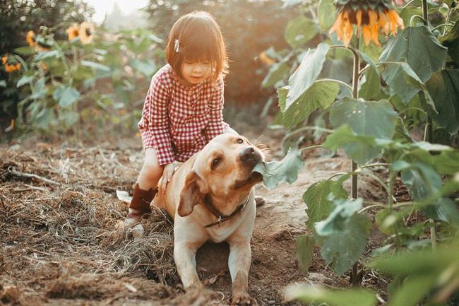 Khuôn mặt sợ chó siêu đáng yêu của cô bé má phính Hà Nội ăn đứt Vô Diện lạnh lùng - Ảnh 11.