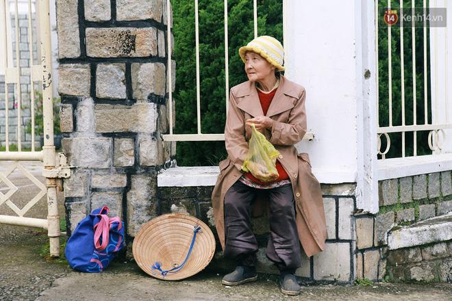 Hồng nhan thời trẻ nhưng về già chẳng chồng con, cụ bà 83 tuổi bầu bạn với thú hoang nơi phố núi Đà Lạt - Ảnh 15.